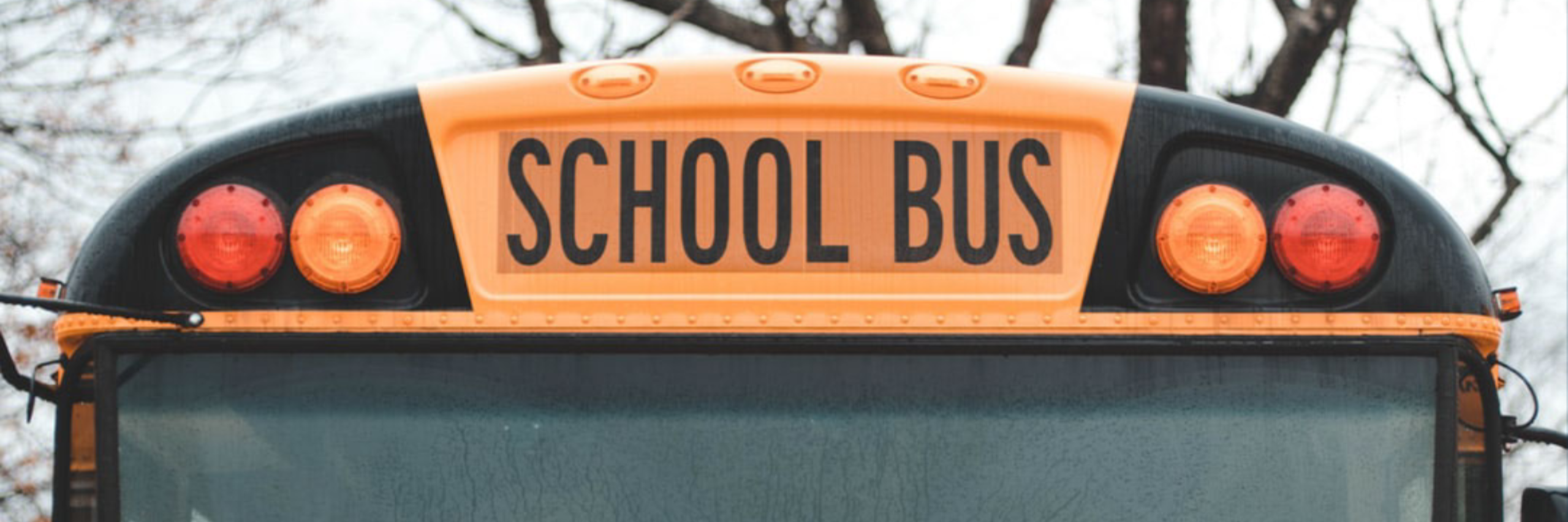 Webinar: From Yellow to Green: Reducing School Transportation's Impact on the Environment